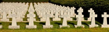 Solidarite avec les morts - 01