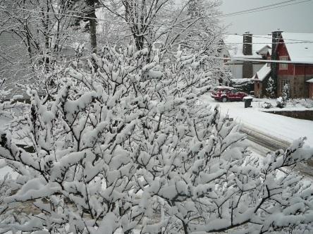 Lévis l'hiver - choix - 17