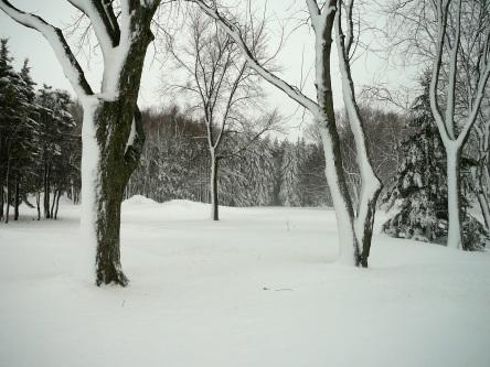 Lévis l'hiver - choix - 20
