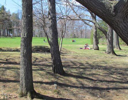 5 Bois de Coulonge_Québec_02-05-2015 - 19