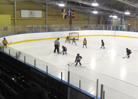 16 Hockey Patinage Arena Levis 09-01-2015 - 22