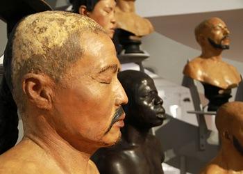 4 bustes-hommes Musée de l homme Paris 2015