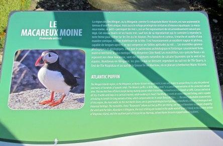 Parc Marie-Victorin 123_ 15-08-2015