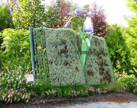 Parc Marie-Victorin 138_ 15-08-2015