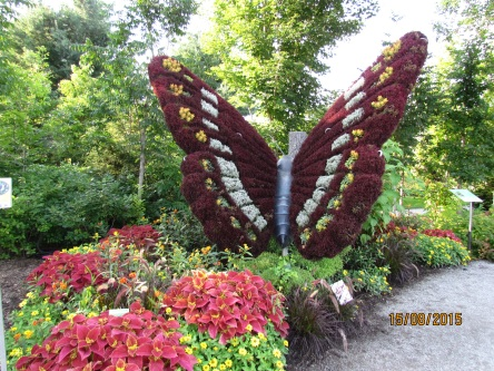 Parc Marie-Victorin 142_ 15-08-2015