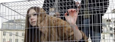 femme vivante dans une cage_Corriveau_in Liberation - Version 2