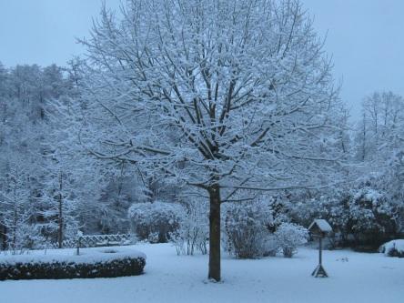 levis-saint-nom-hiver-2009-d